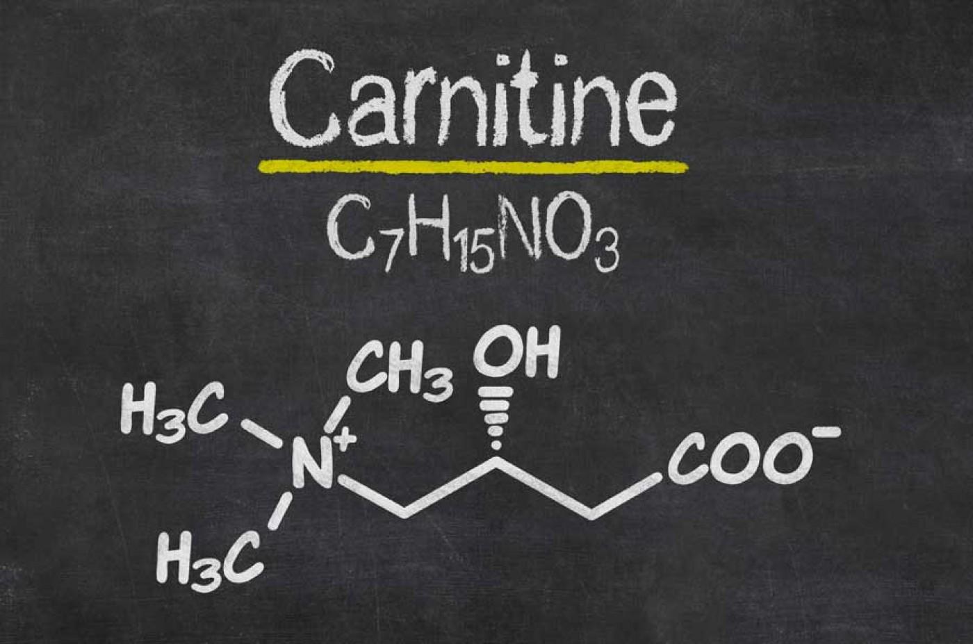 Что важно знать об L-карнитине?