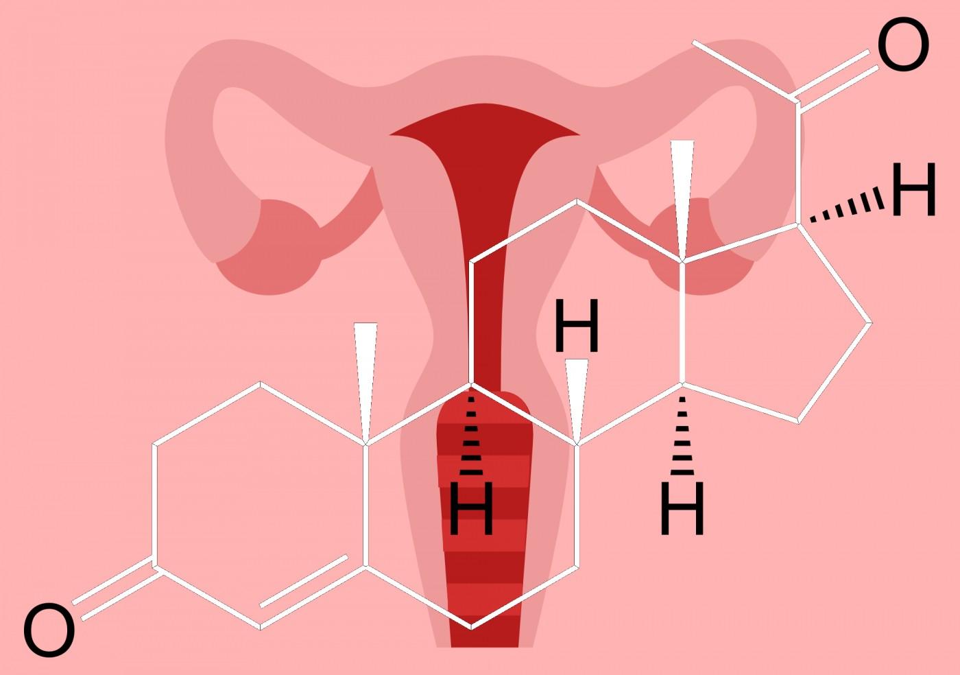Гормоны в женском организме